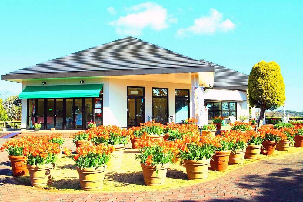 くりはま花の国 レストラン「ロスマリネス」