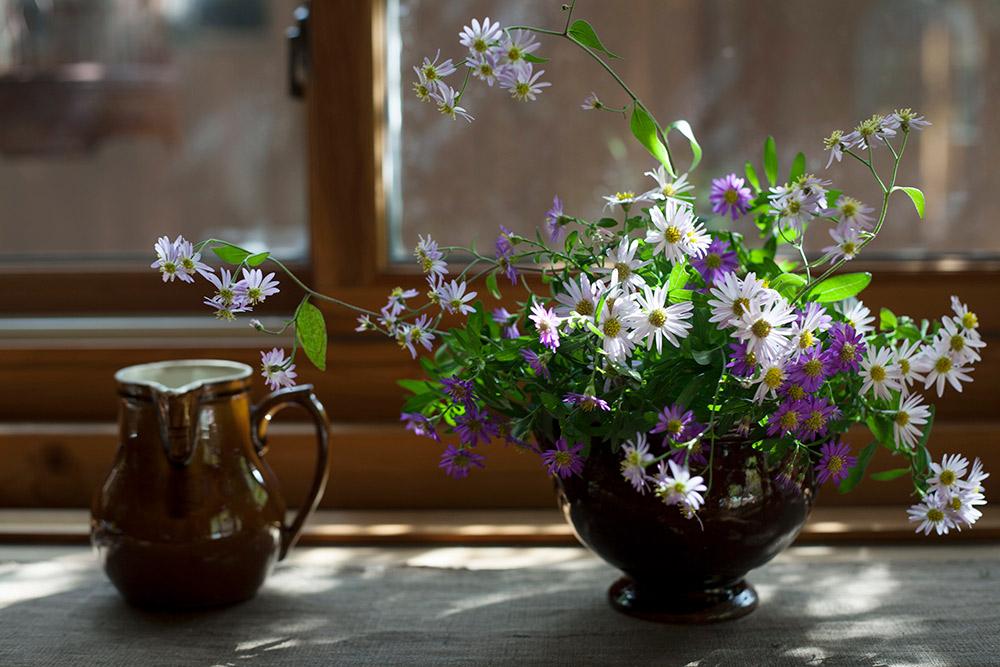 野菊のあしらい