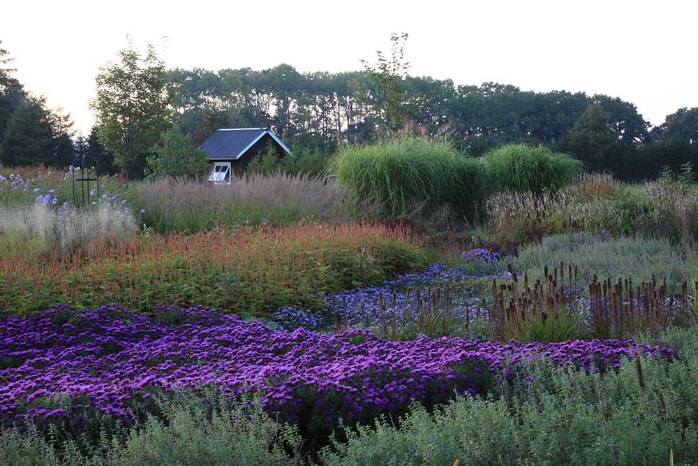 北海道「大森ガーデン」