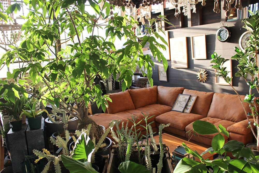 ガーデンガーデンの温室