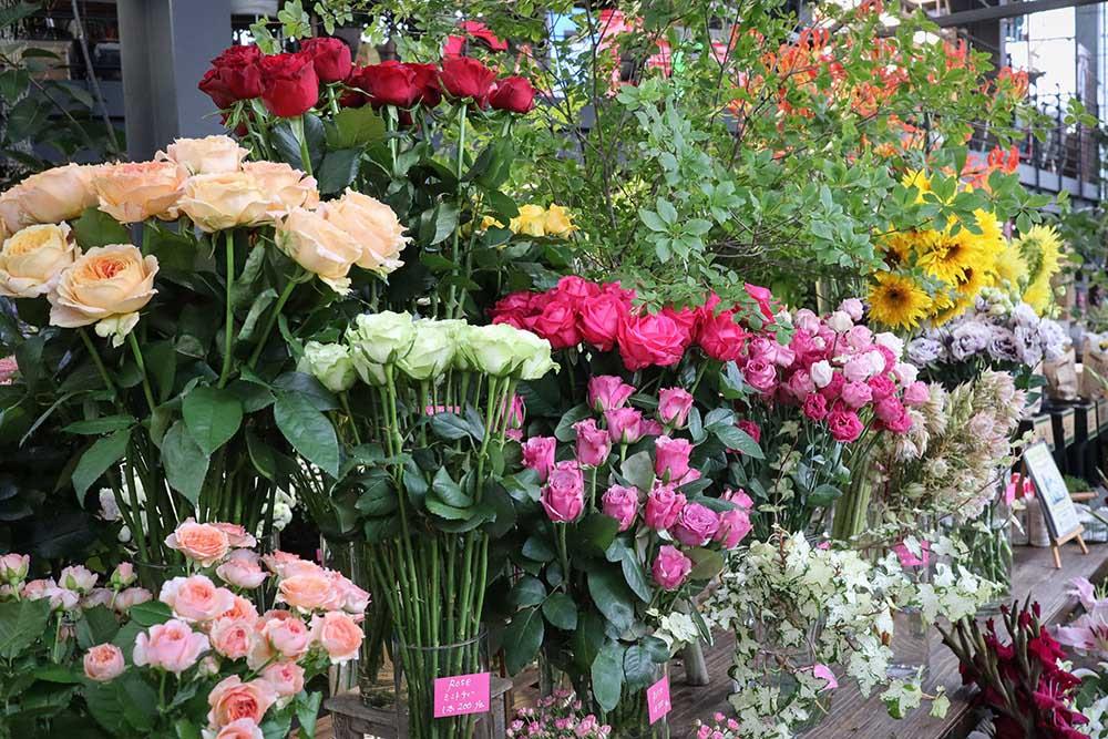 ガーデンガーデンの切り花