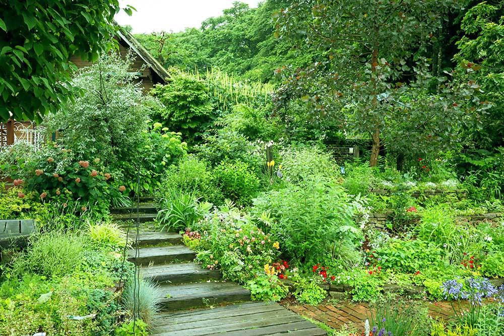 ガーデンガーデンの宿根草ガーデン