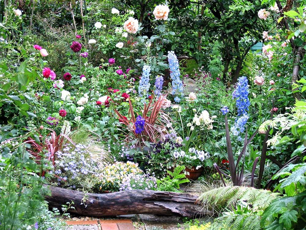 花のあるガーデン写真