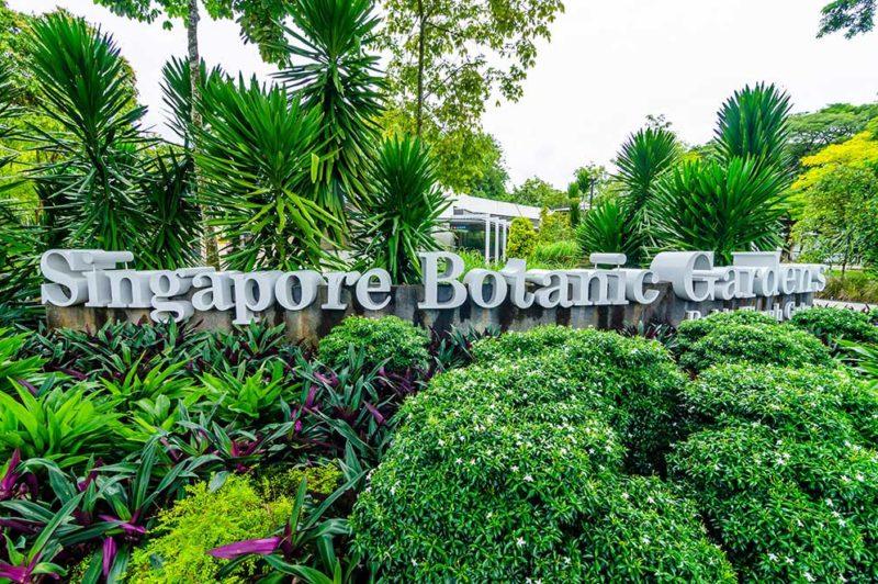 シンガポールの庭