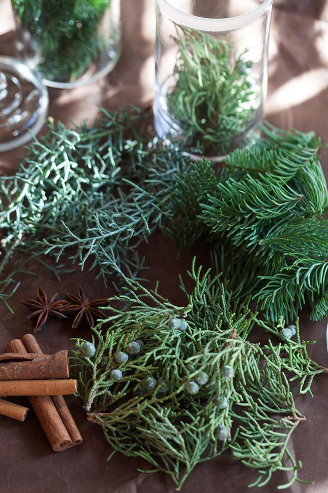 針葉樹の香り
