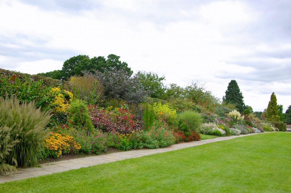 プラントハンターの時代の庭。イギリス「ウィズレー植物園」。