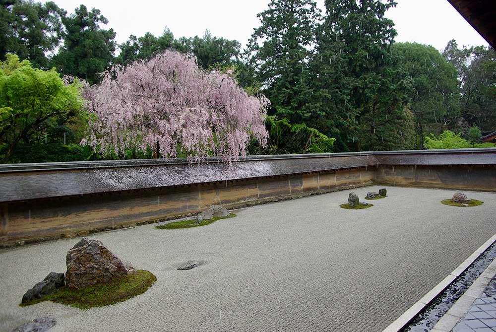室町時代に作庭され、枯山水庭園として有名な京都「龍安寺の石庭」。