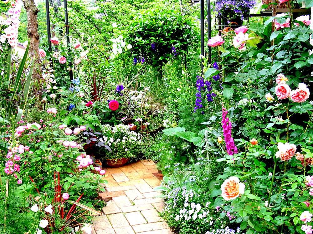 ガーデン写真