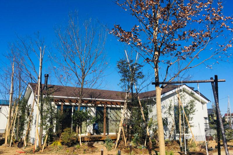 ガーデンセラピーが体験できる施設「花音の森」をつくるまでvol.2 植物から考える! パッシブデザインと住み続けられるまちづくり