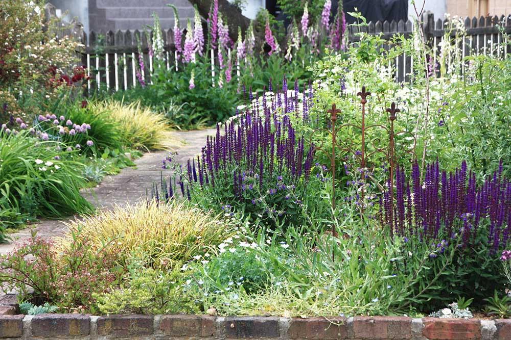 藤井邸の5月の庭
