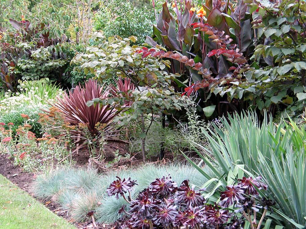 フィッツロイ公園の花壇