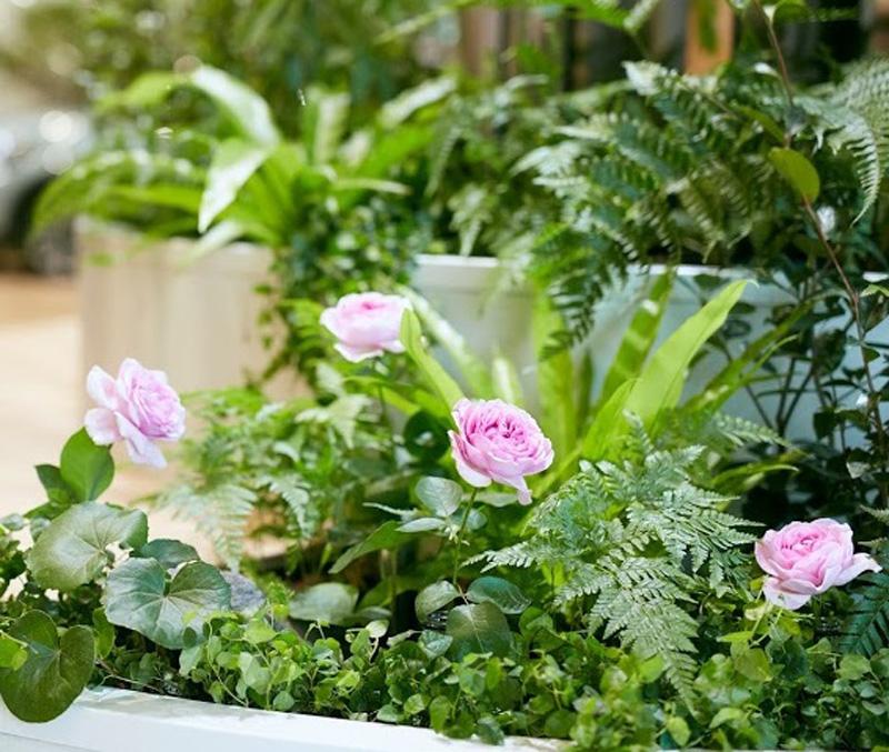 季節の変化を花で表現