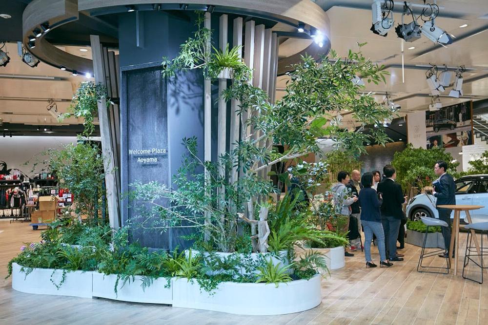 ワイガヤの木の周囲には30種類ほどの植物