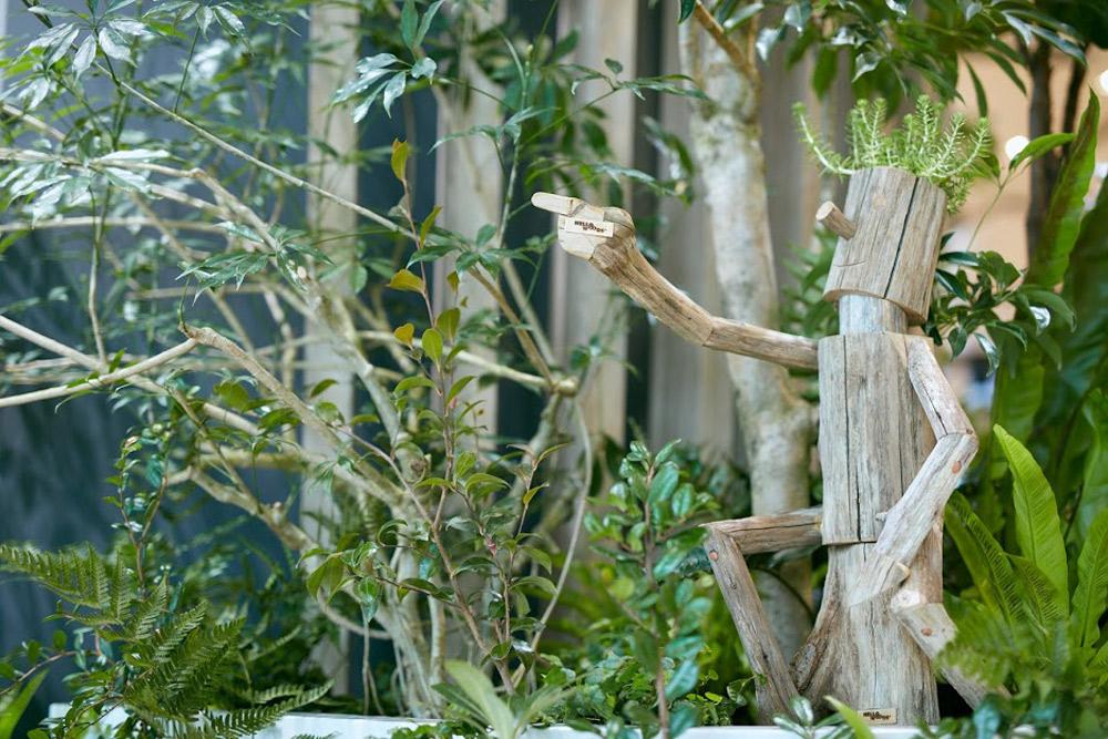 ワイガヤの木の下にも木人
