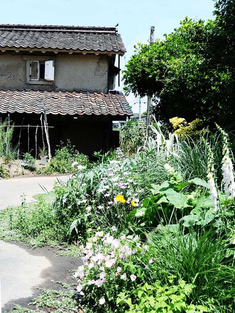 鳥取・いなばや邸「蚊園」