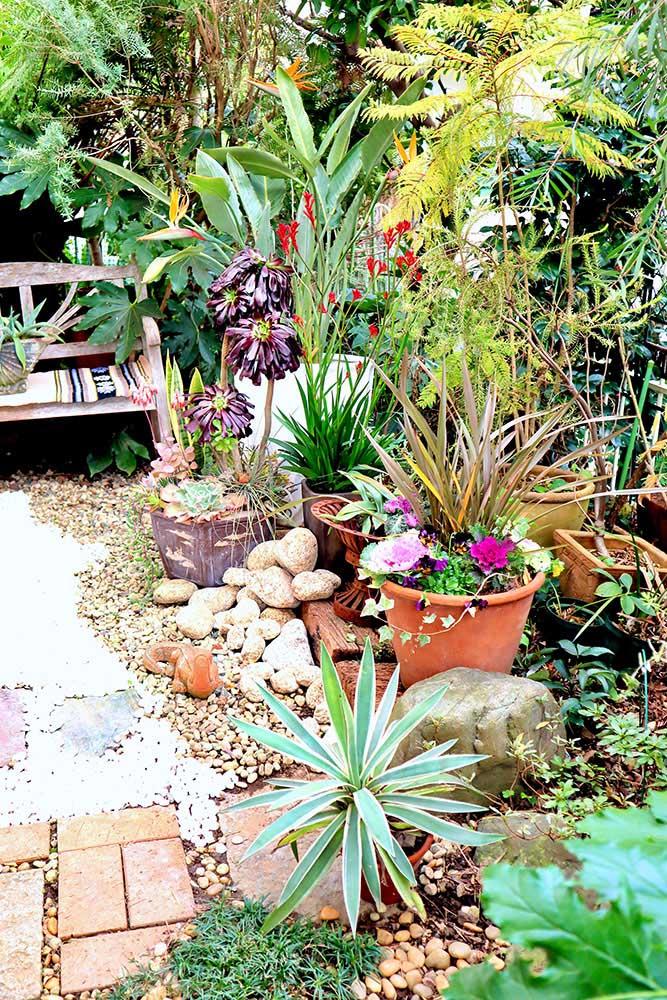 リニューアル後の庭