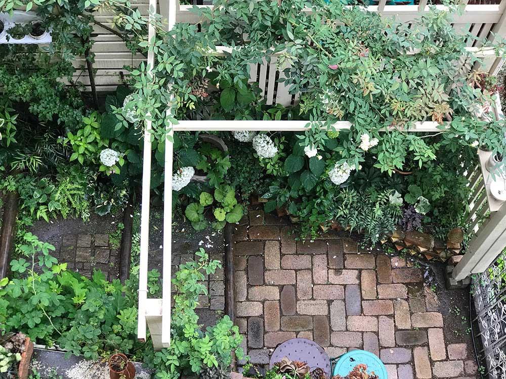 レンガ敷きの庭