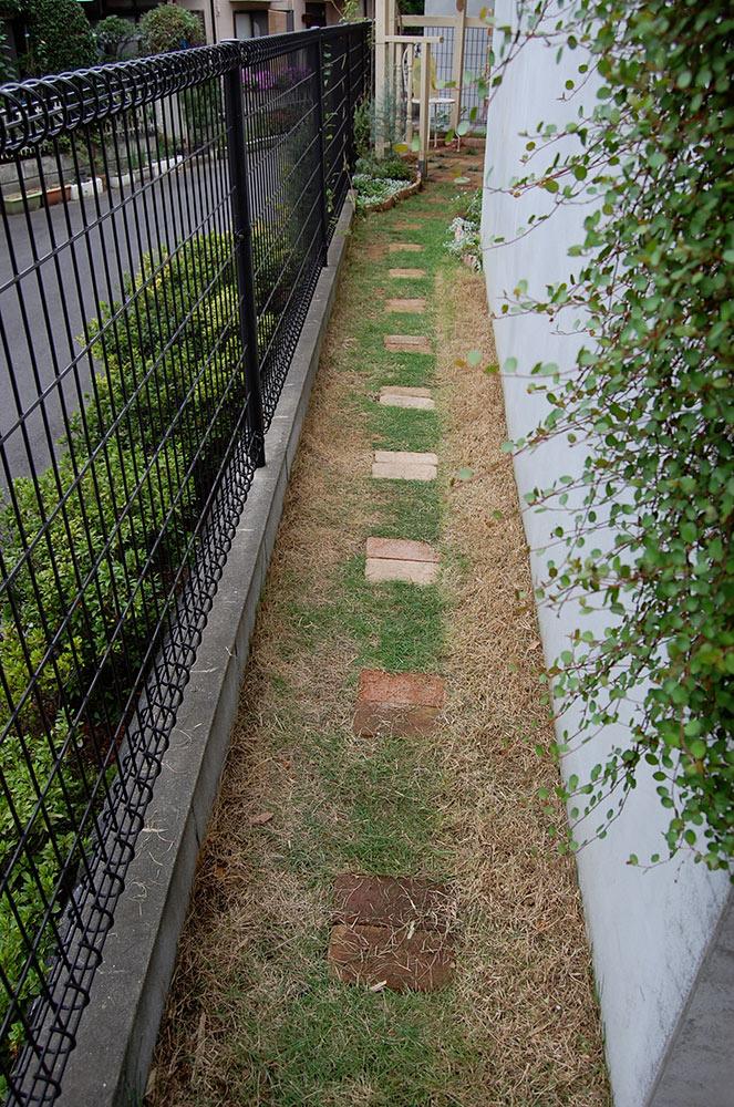 芝生の通路