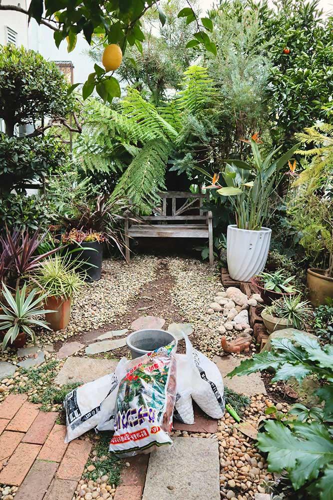 庭のプチリニューアル