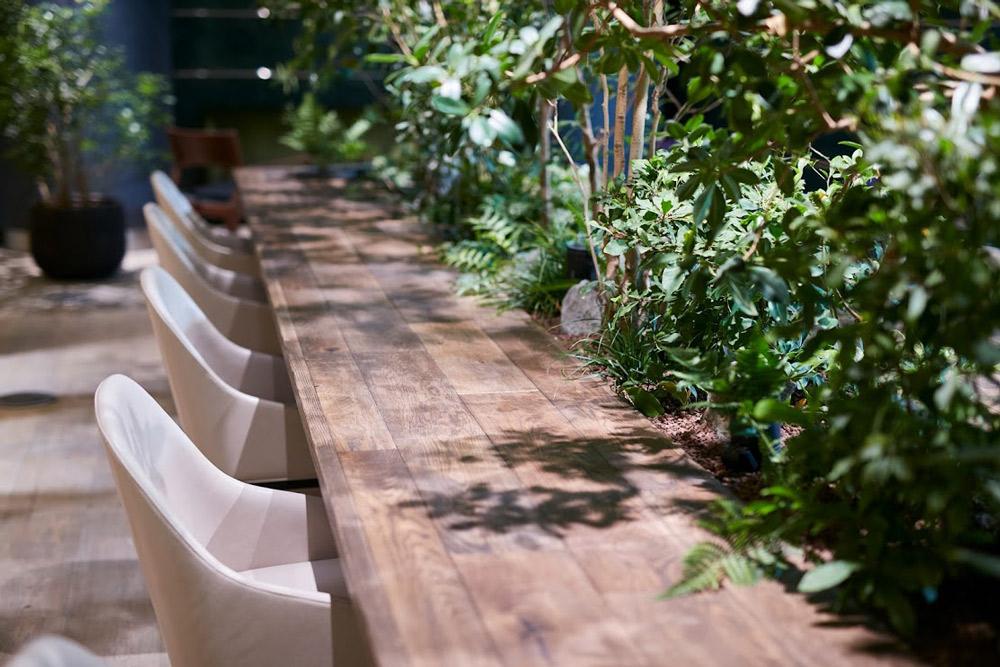テーブルに落ちる木漏れ日