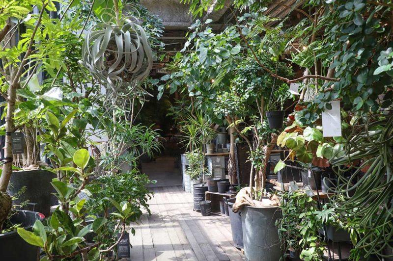 園芸店「garage NAGOYA」
