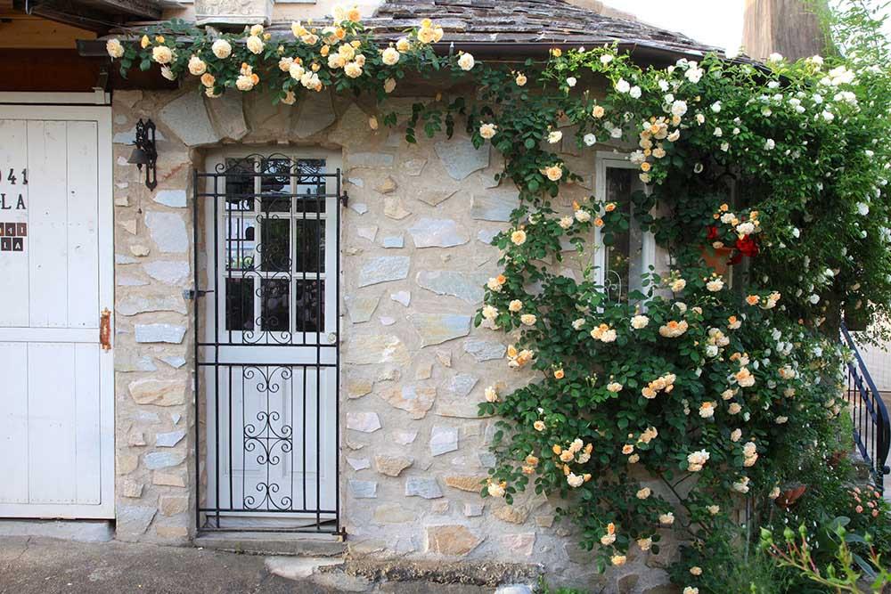 バラの咲く家