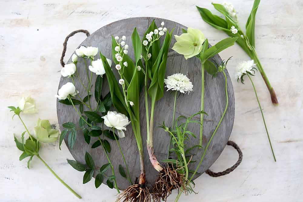 ガーデンブーケの花
