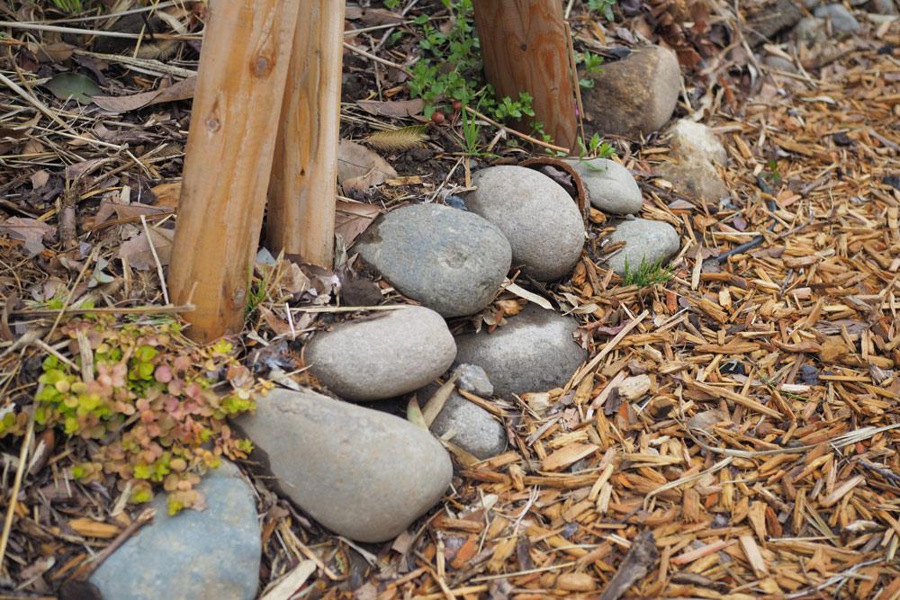 庭作りで大事にしたこと4: 庭で出たものは庭で再利用!ゴミにしない
