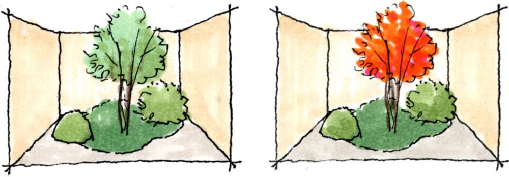ベージュ色の背景は緑や紅葉が綺麗