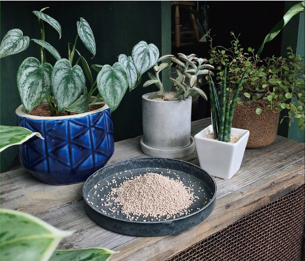 観葉植物専門店「cotoha」オリジナルの用土