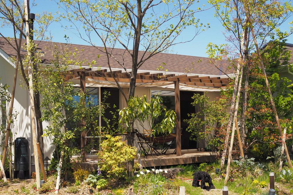 夏の暑さ対策! DIYでパーゴラにシェードをつけました〜ガーデンセラピーが体験できる施設「花音の森」ができてからVol.1