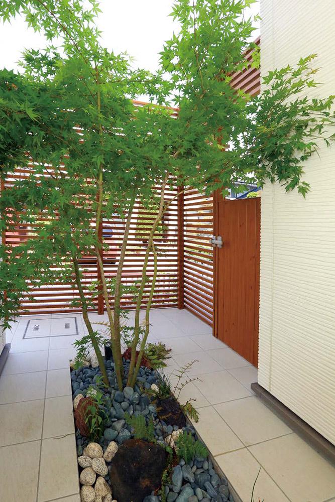 創作坪庭のデザイン