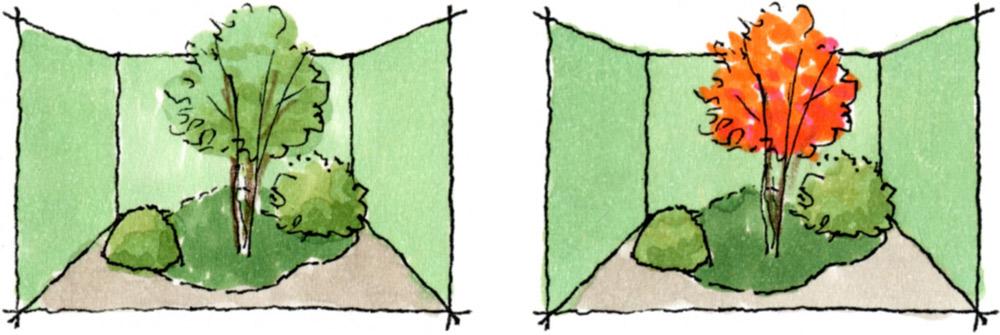 生垣の背景は緑がなじんで柔和