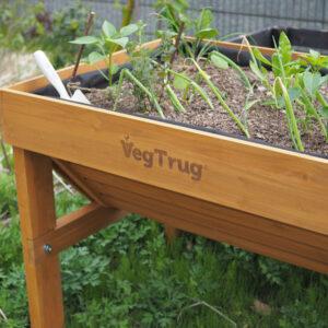 ベジトラグでガーデニングをはじめよう!vol.2コンパニオンプランツで育てる野菜とハーブの植え付け編