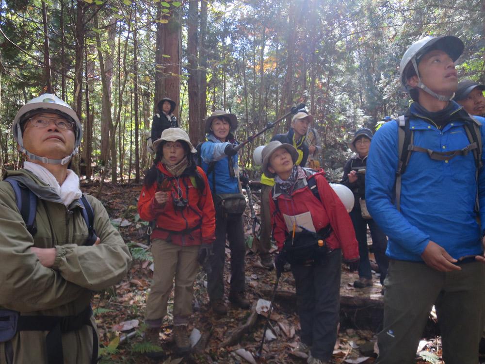 森林インストラクター資格試験向けコース