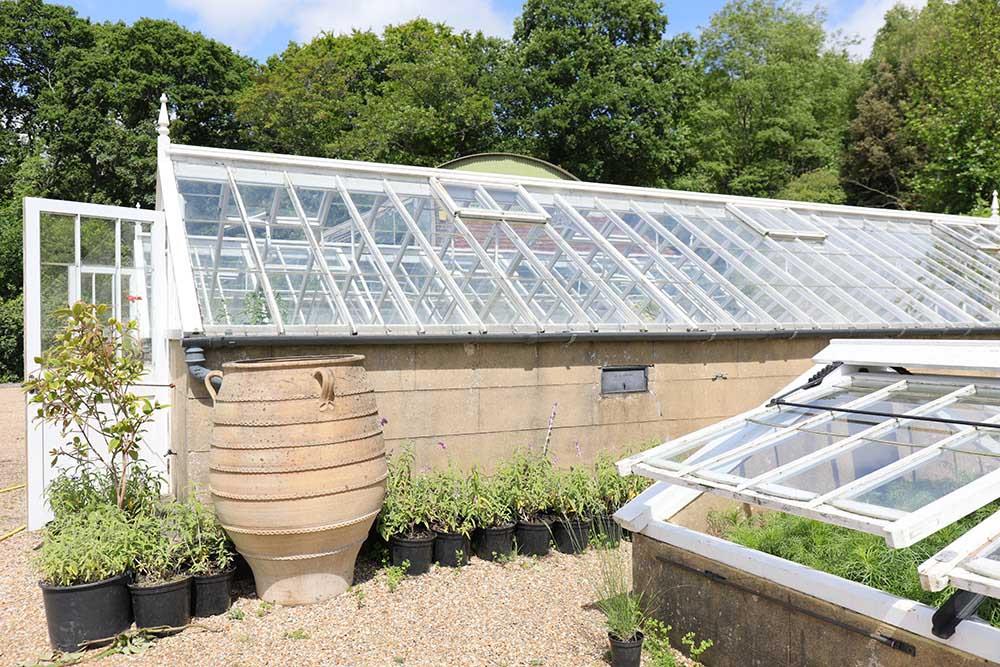 グレイブタイ・マナーの温室