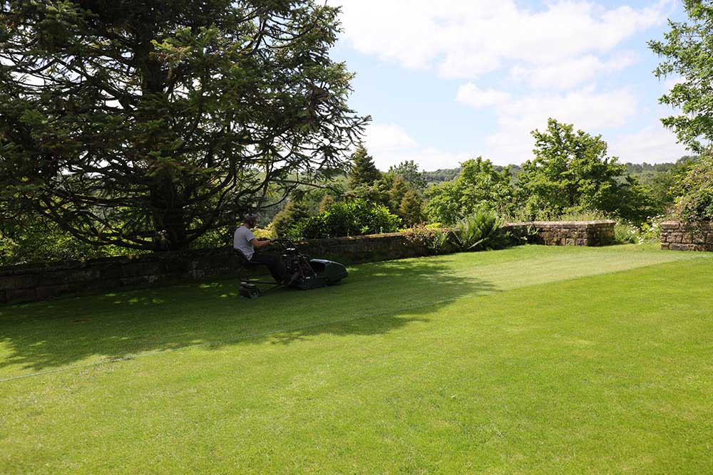 グレイブタイ・マナーの芝生