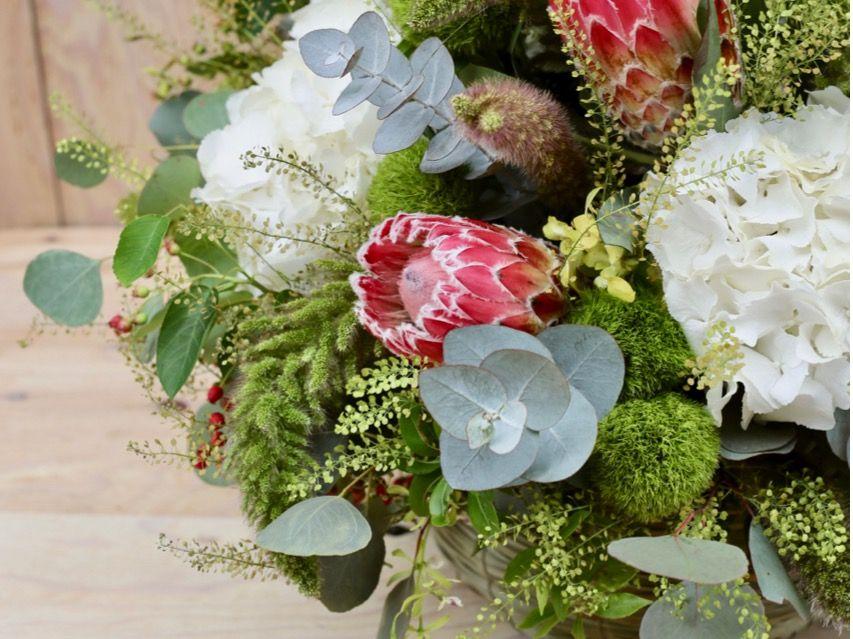 プロテアの花