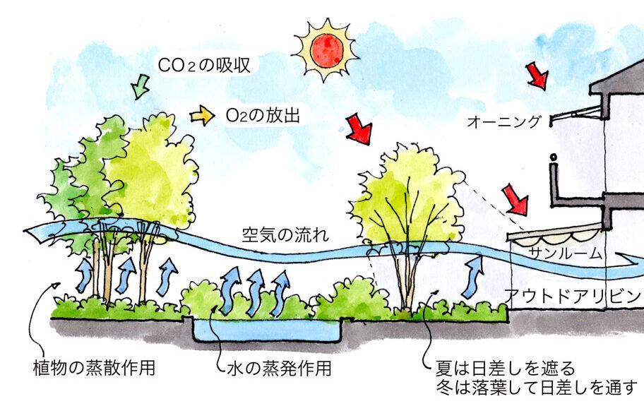 自然環境共生の庭のシステム