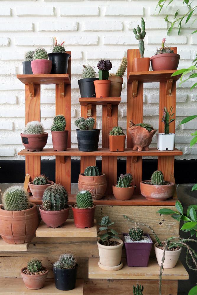 端材を利用したオリジナルの植物の棚。リズミカルな段差がかわいい。squidmanexe/Shutterstock.com