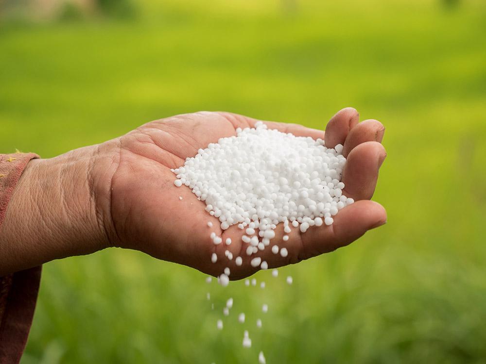 マンデビラの肥料