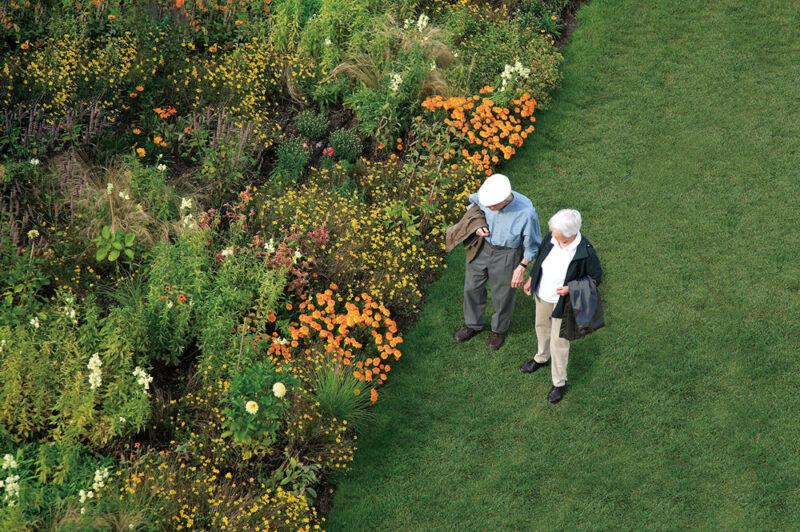 身近にある花・緑・ガーデンで健康を育む「ガーデンセラピー」が学べる資格『ガーデンセラピーコーディネーター』とは?