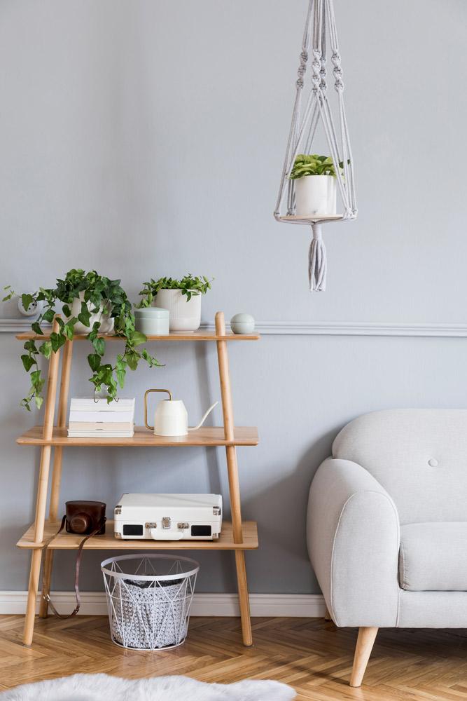 植物の棚:プランツシェルフ