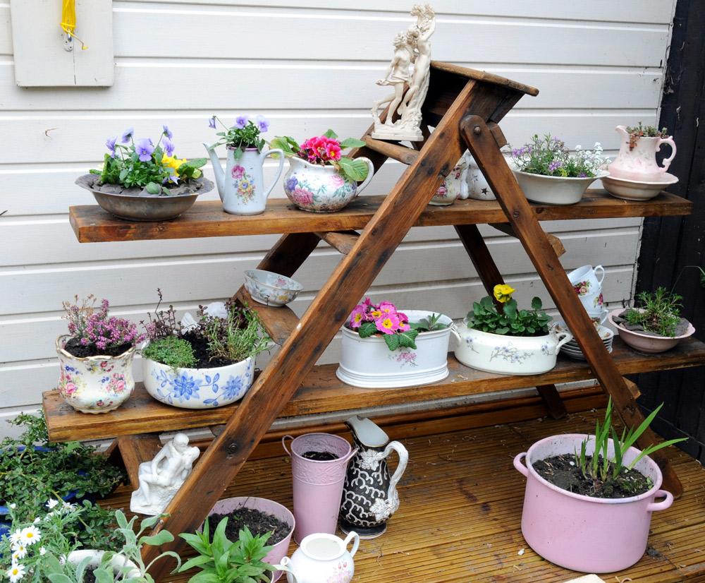 脚立に板を渡して横長の植物棚として空間を有効利用。claire norman/Shutterstock.com