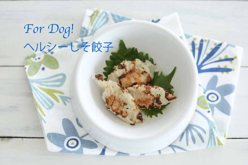 手作りドッグフード シソ餃子