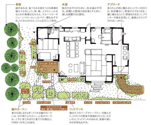 戸建ての菜園