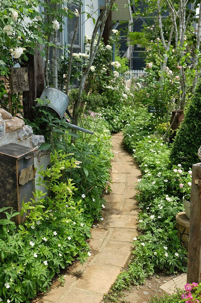 玄関から庭へのアプローチ