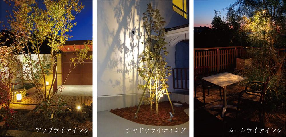 葉の密度が薄い樹木におすすめのライトアップ方法