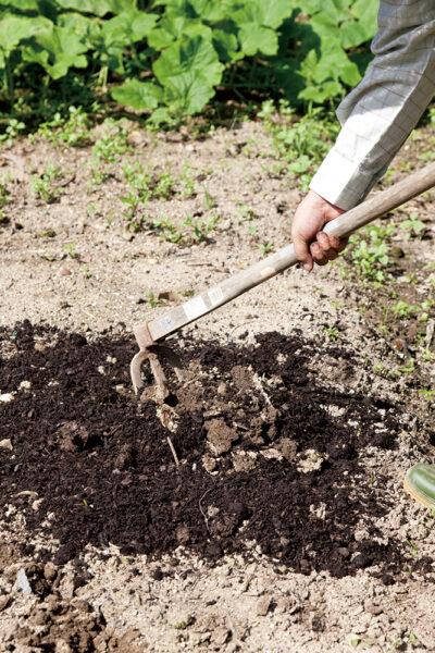 堆肥をすきこむ