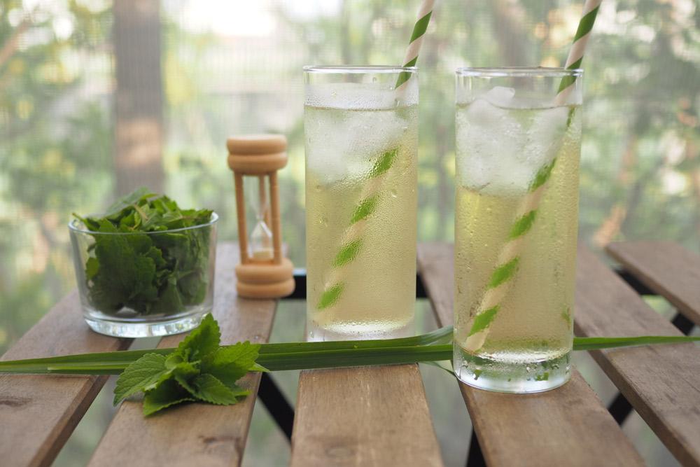 レモンの爽やかな香りが楽しめるブレンドレシピ♪ フレッシュアイスハーブティーを作ろう